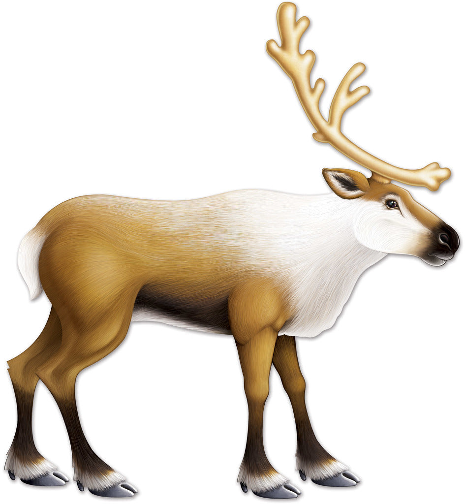 Jointed Reindeer - CASE OF 12