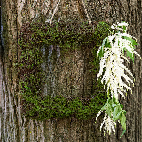 Faux Moss and Wicker Square Frame - Small (Pack of 1)