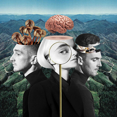 CLEAN BANDIT What Is Love - 852 Entertainment