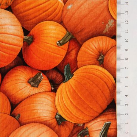 Food - Pumpkins
