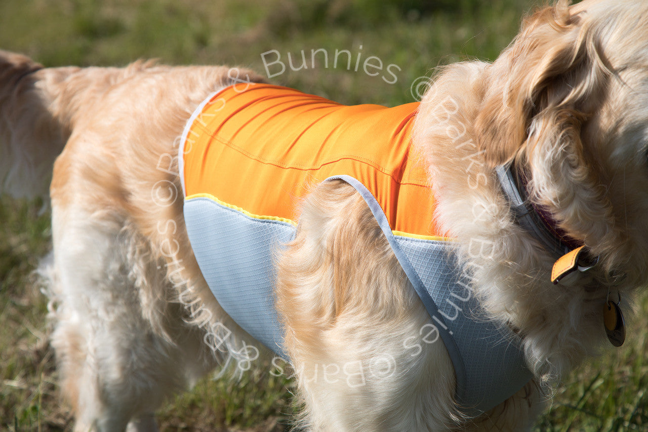 Ruffwear Jet Stream Cooling Vest Review