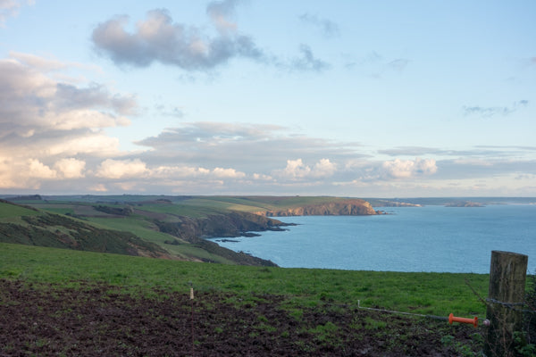 View over the sea at Devon | Barks & Bunnies