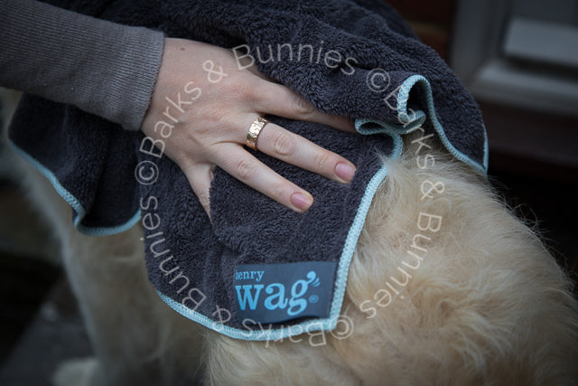 Henry Wag Microfibre Super Absorbent Dog Towel Review | Barks & Bunnies