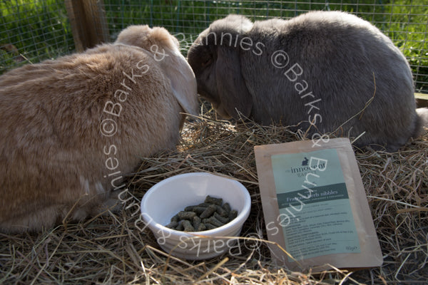 Innocent Rabbit Fragrant Herb Nibbles by The Innocent Pet | Barks & Bunnies