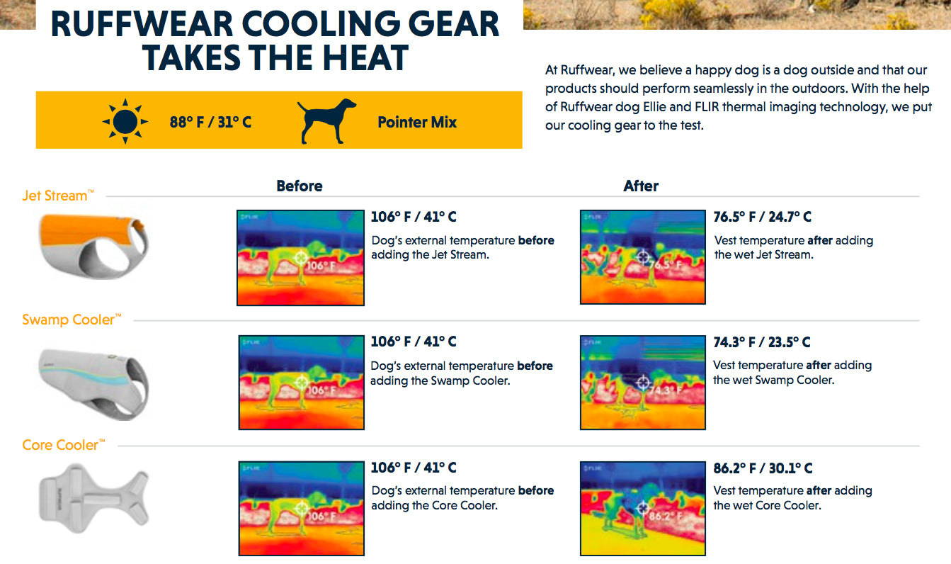 Ruffwear Swamp Cooler Review 2017, Dog Cooling Coat | Barks & Bunnies