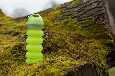 Collapsible Travel Bottle