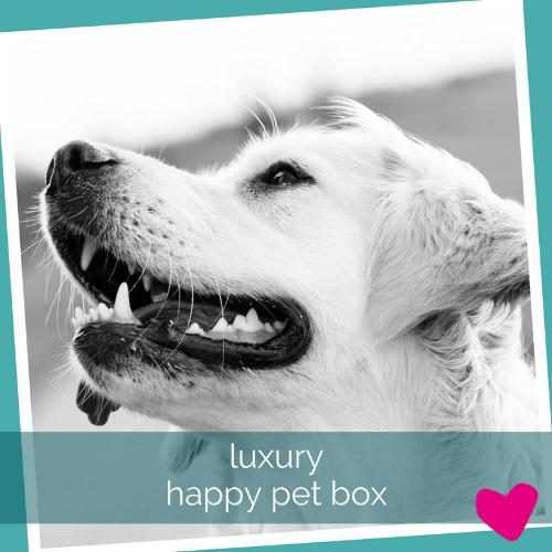 Happy Dog Subscription Box UK, Luxury Toys & Treats | Barks & Bunnies