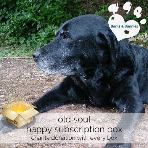 Dog Subscription Box with Toys for Old Dogs | Barks & Bunnies