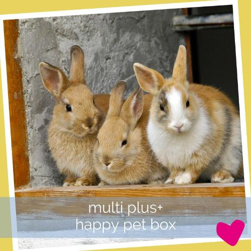 Happy Rabbit Subscription Box UK, Multi PLUS | Barks & Bunnies