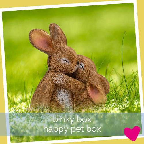Binky Box - Happy Rabbit Subscription Box | Barks & Bunnies