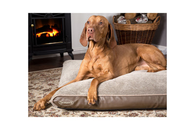 Scruffs Chateau Orthopedic Pillow, Memory Foam Dog Bed | Barks & Bunnies