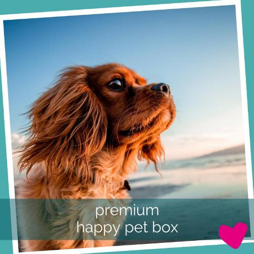 Happy Dog Subscription Box UK, Premium | Barks & Bunnies