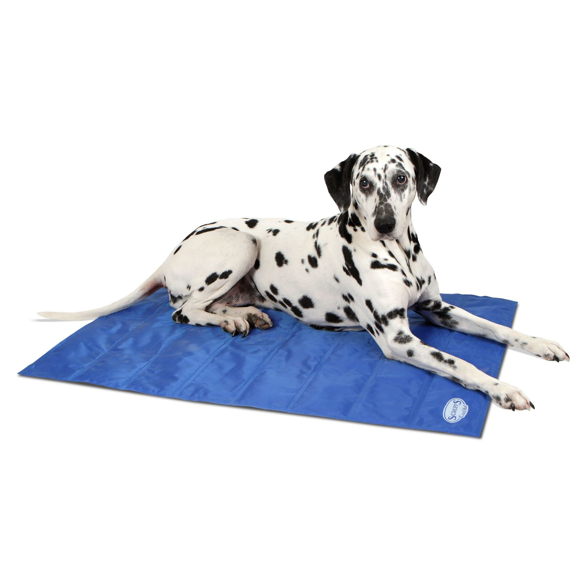 Scruffs Cool Mat, Pet Dog Cooling Mat | Barks & Bunnies
