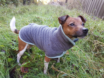 Henry Wag Microfibre Drying Coat for Dogs | Barks & Bunnies