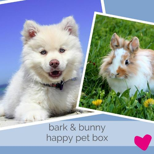 Happy Rabbit & Dog Subscription Box UK, Bark & Bunny | Barks & Bunnies