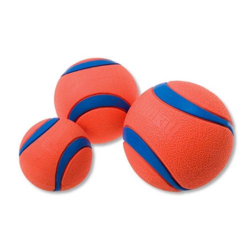Chuckit Ultra Ball, Durable Dog Ball Toy | Barks & Bunnies