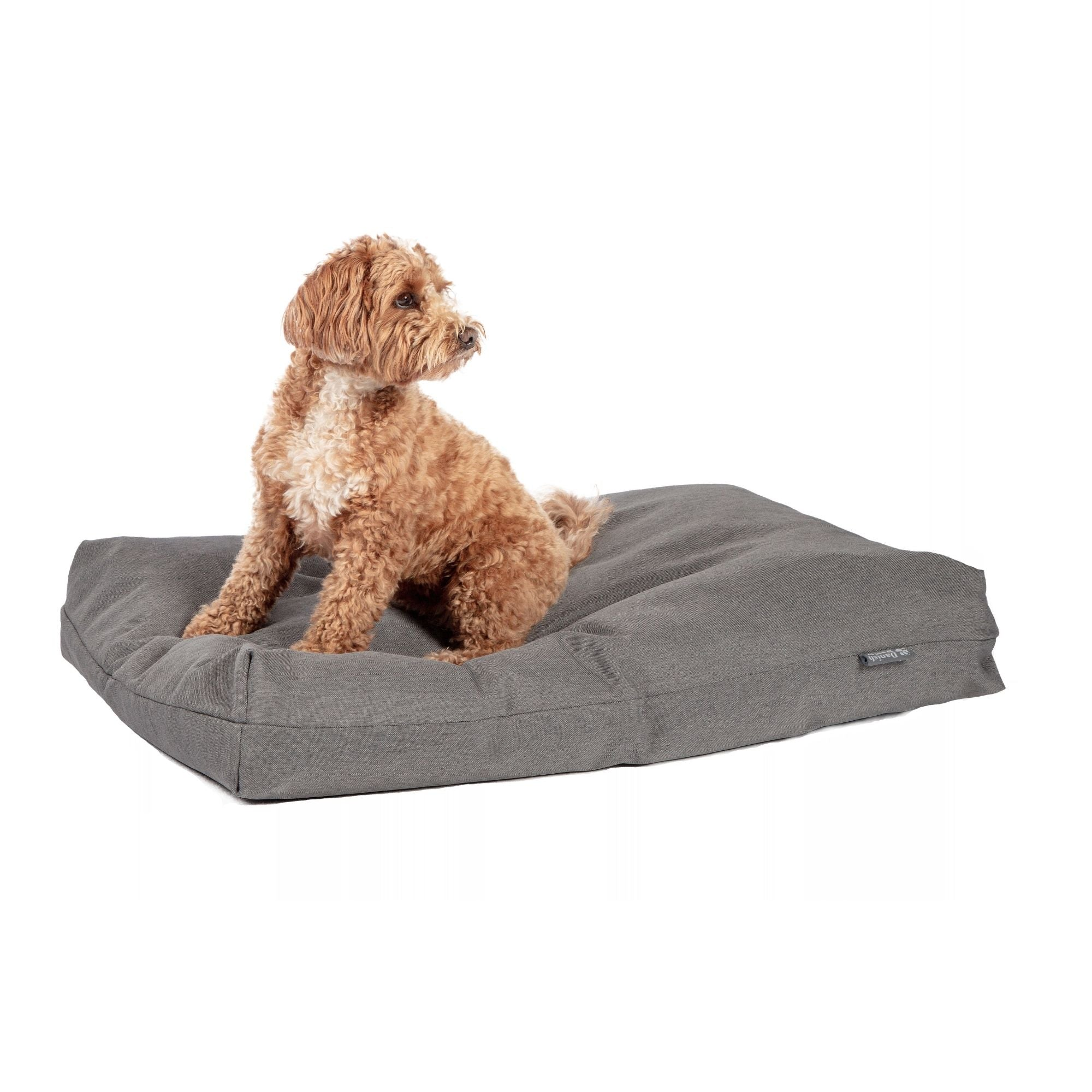 Danish Design Anti Bacterial Dog Bed | Barks & Bunnies