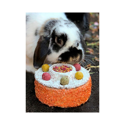 Rosewood Celebration Cake for Rabbits & Small Animals | Barks & Bunnies