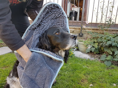 Henry Wag Microfibre Noodle Glove Towel For Dogs | Barks & Bunnies