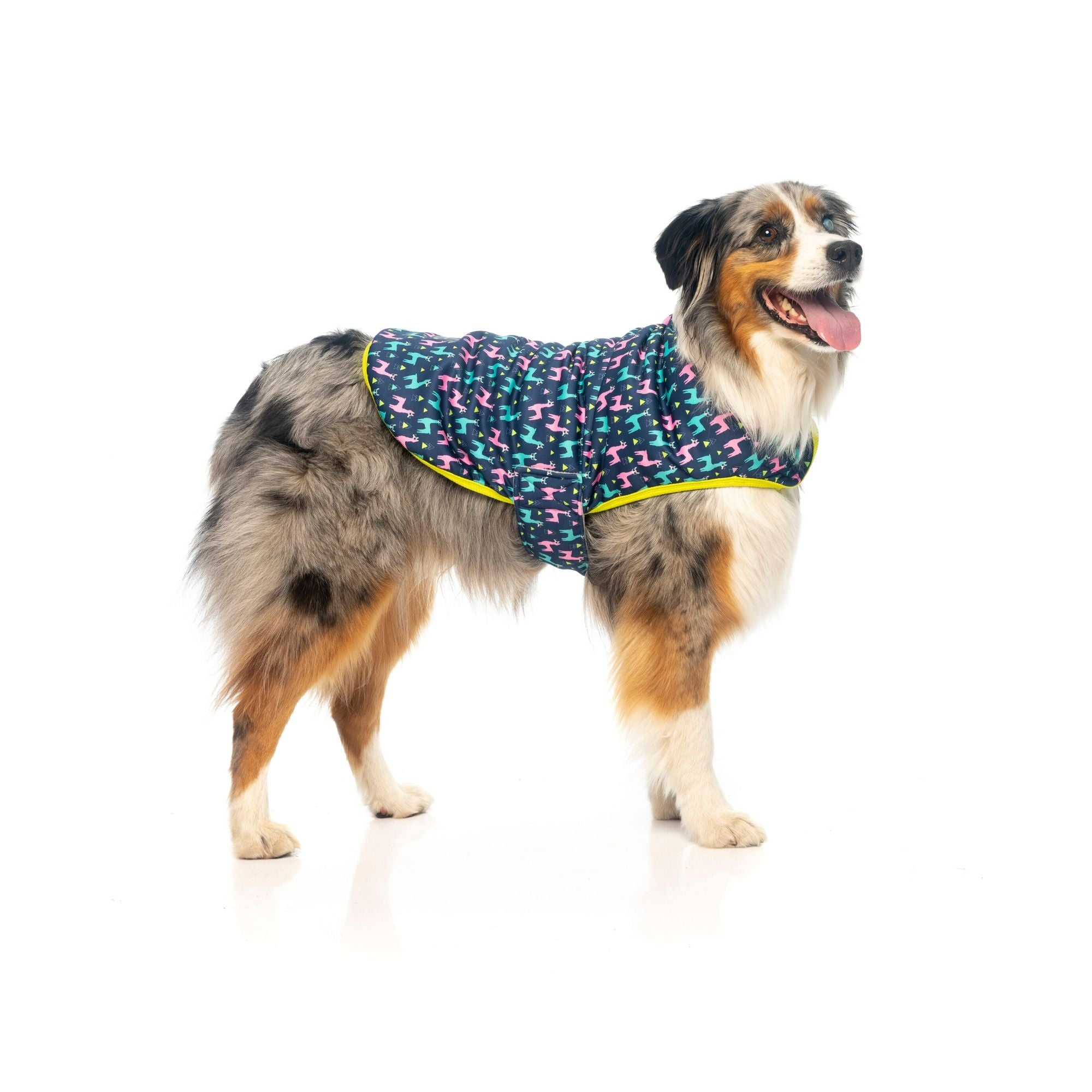 Fuzzyard No Probllama Wrap Vest Dog Coat | Barks & Bunnies