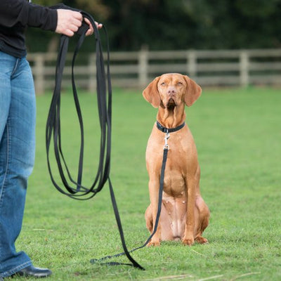 Clix Long Line Recall Training 10m, Dog Long Line | Barks & Bunnies