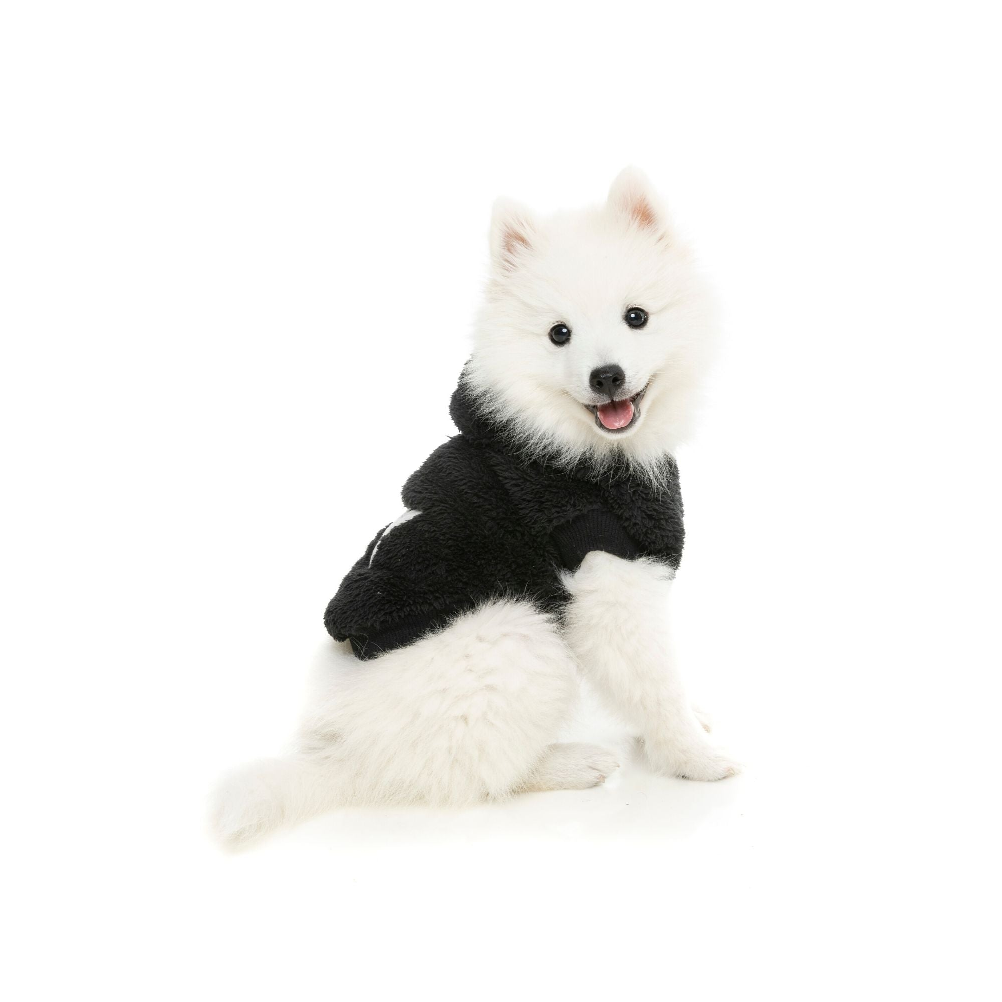 Fuzzyard Teddy Hoody, Dog Coat | Barks & Bunnies