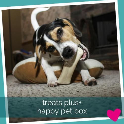 Monthly Happy Dog Treat Subscription Box UK | Barks & Bunnies