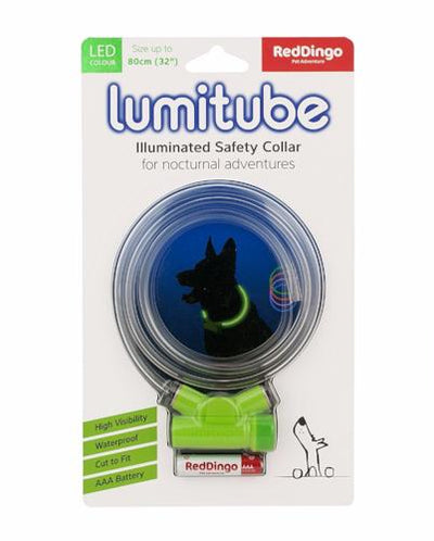 Red Dingo Lumitube Illuminated Safety Collar for Dogs | Barks & Bunnie