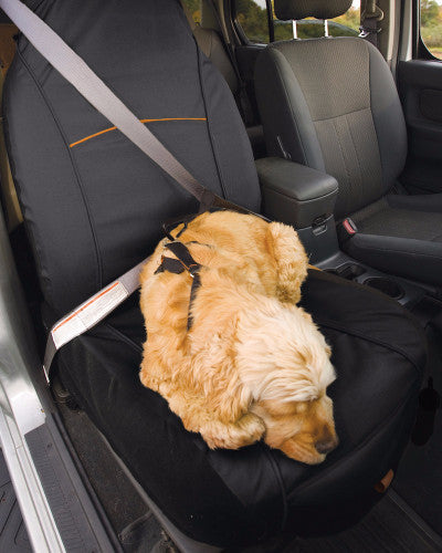 kurgo covers harnesses dog car travel products. Black Bedroom Furniture Sets. Home Design Ideas