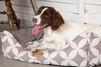 Scruffs Florence Box Bed, Cotton Dog Bed | Barks & Bunnies