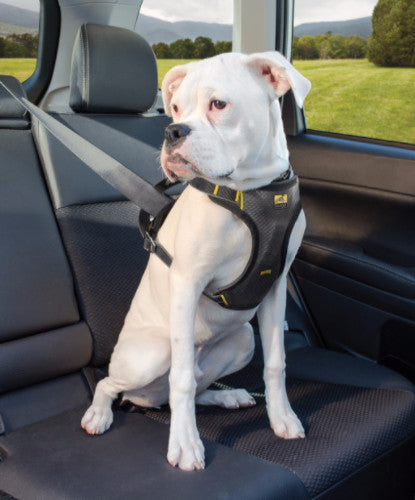 Kurgo Impact Car Harness for Dogs | Barks & Bunnies