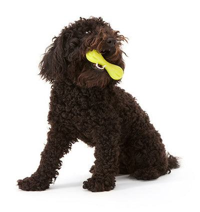 Zogoflex Hurley UK, Zogoflex Dog Toys UK Stockist | Barks & Bunnies