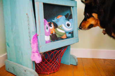 P.L.A.Y. Chatterbox Monster Dog Toy, Eco-Friendly | Barks & Bunnies