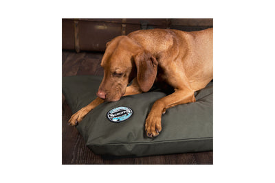 Scruffs Expedition Memory Pillow, Orthopedic Dog Bed | Barks & Bunnies