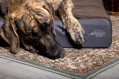 ArmourDillo Robust Dog Bed