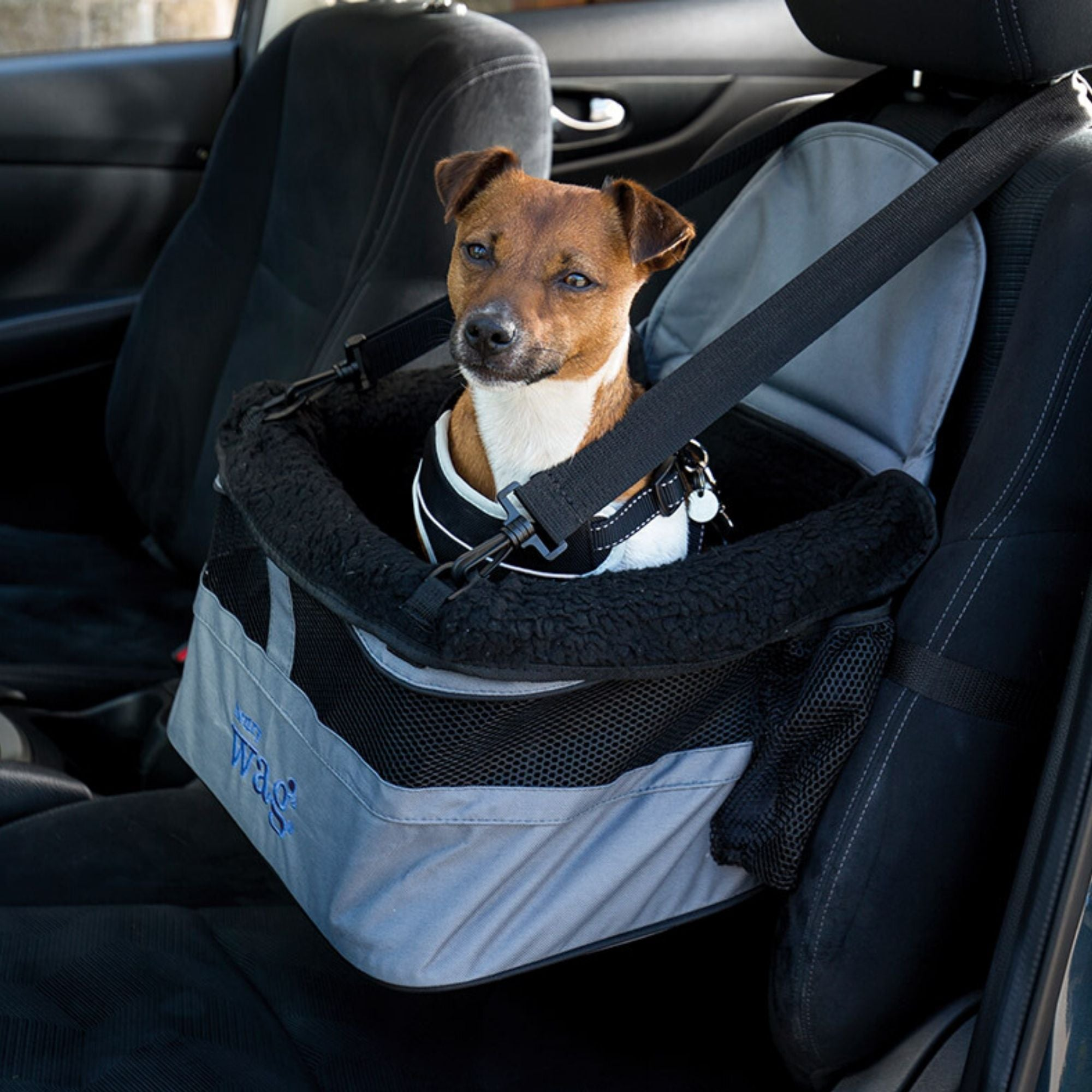 Henry Wag Car Booster Seat for Dogs & Pets | Barks & Bunnies