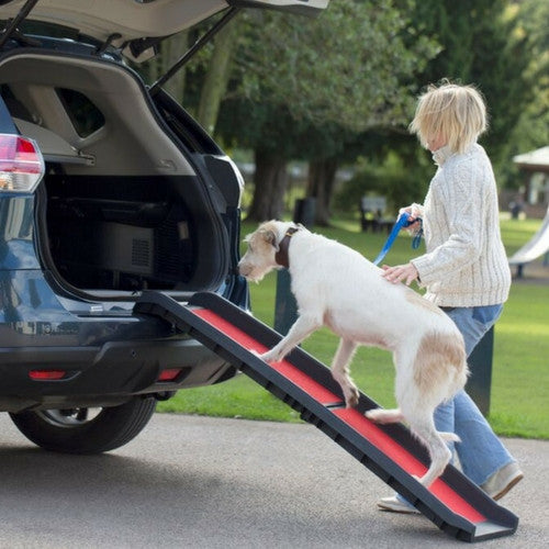 Henry Wag Lightweight Folding Dog Ramp | Barks & Bunnies