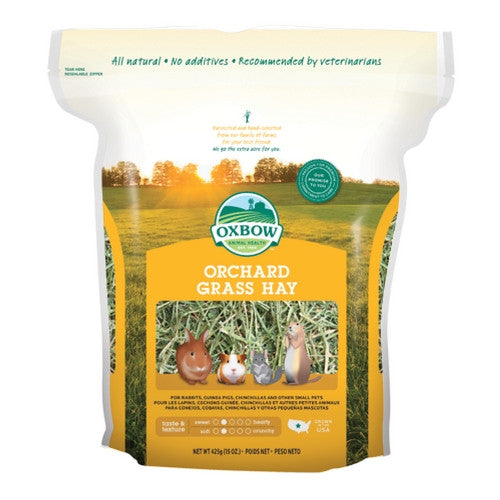 Oxbow Orchard Grass for Rabbits & Small Animals | Barks & Bunnies