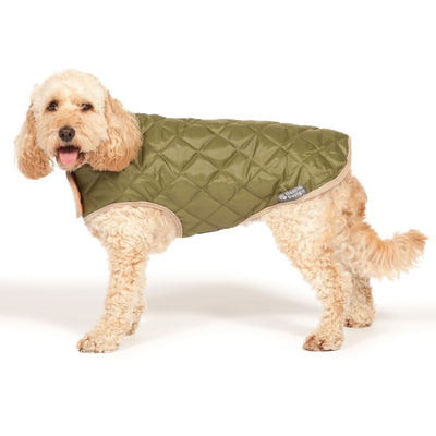 Danish Design Quilted Dog Coat, Winter Dog Coat | Barks & Bunnies