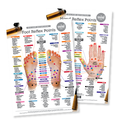 Reflex Points Chart (Hand & Foot)