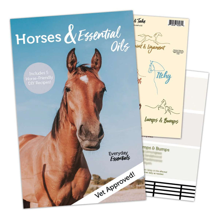 Make & Take: Horses - Your Oil Tools