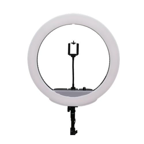 LiteTech MM-25 LED Ring Light with Light Stand