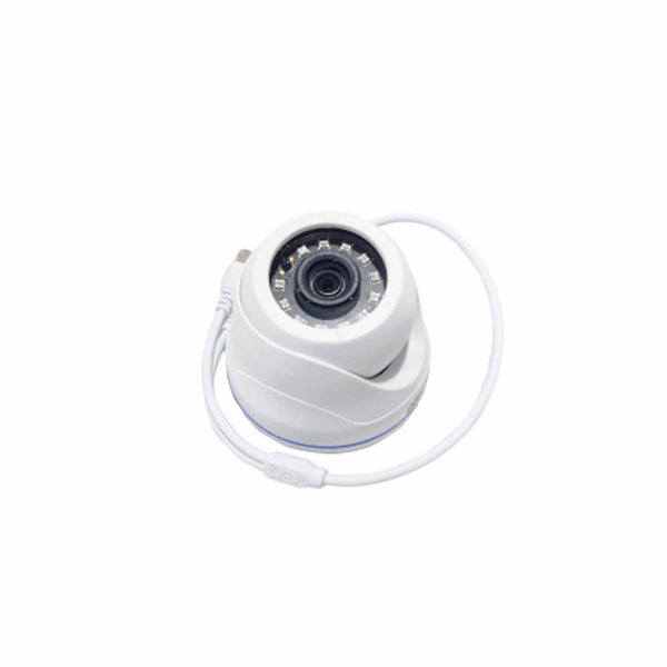Intelligent FHD12X6 Dome Camera
