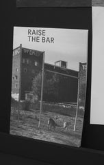 Raise the Bar / Taiyo Onorato & Nico Krebs