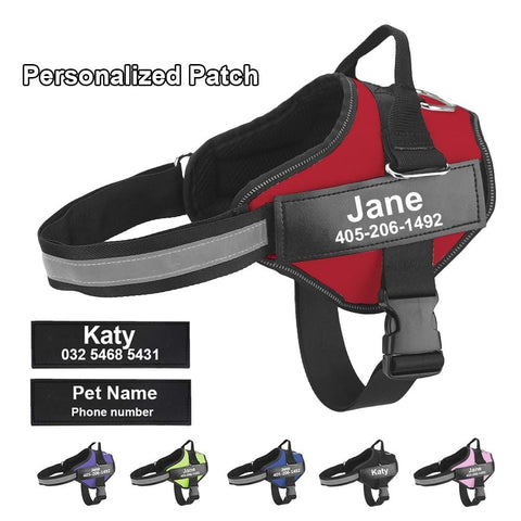 Lifetime Warranty Personalized Doggyfashion™ NO PULL Dog Harness