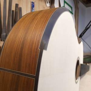 Build Thread: Bouchereau Guitars - MJ.C and Mistral