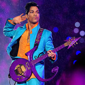 Prince Rogers Nelson 1958-2016