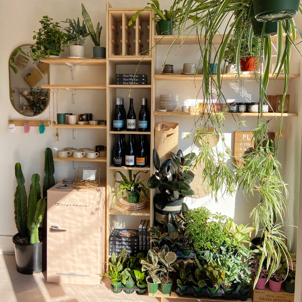 Up your plant game- live better