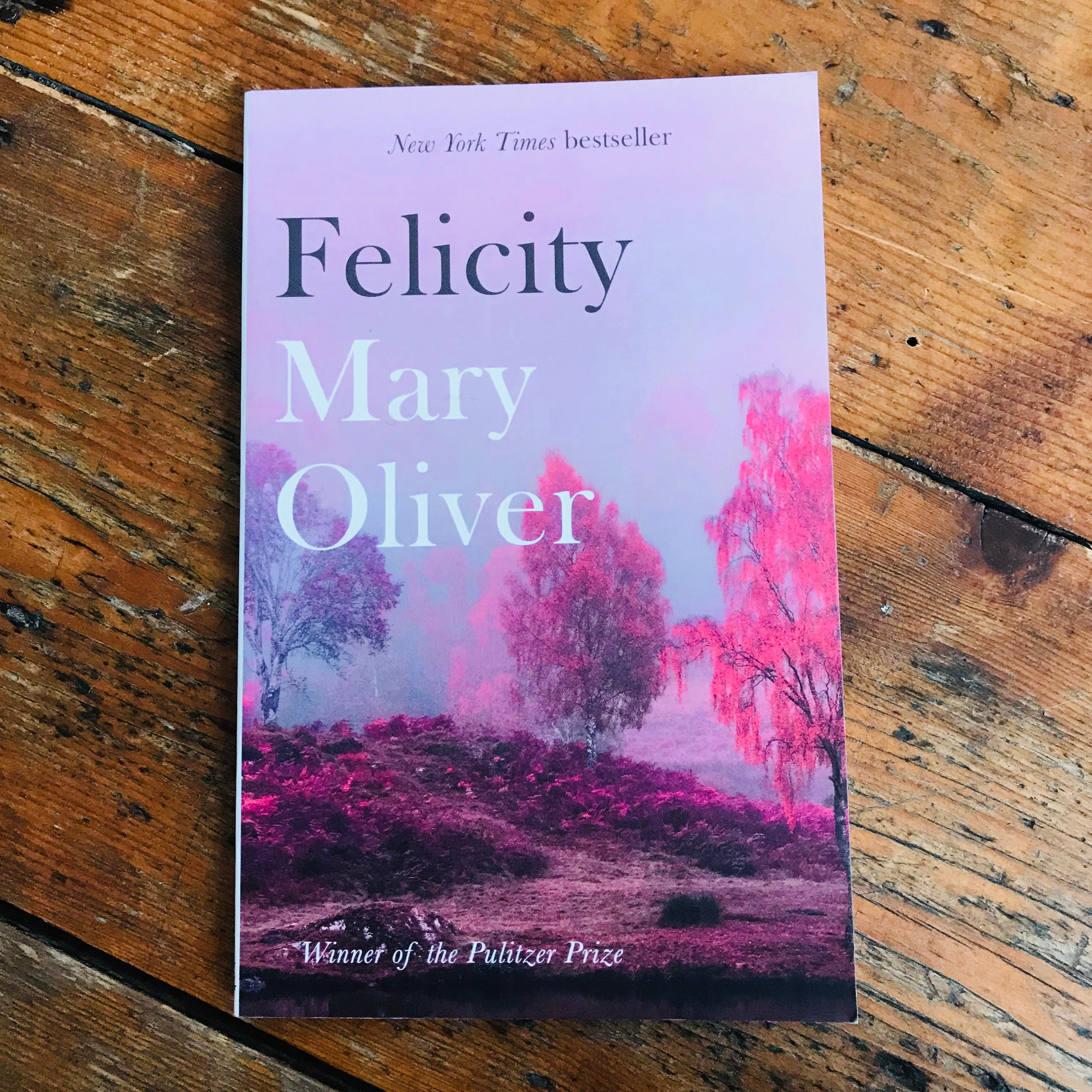 Felicity | Mary Oliver