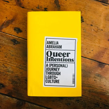 Queer Intentions : A (Personal) Journey Through LGBTQ + Culture | Amelia Abraham
